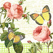 Rose Blush-a Art Print