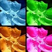 Rose Collage Art Print