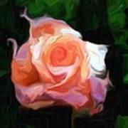 Rose Colored Art Print