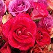 Rose Enhanced Art Print