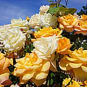 Rose Garden Art Prints Yellow Orange Rose Flowers Art Print