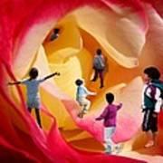 Rose Labyrinth Art Print