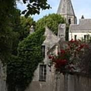 Rose Lane In Loches Art Print