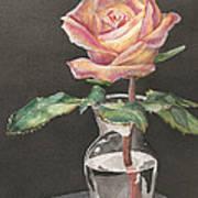 Rose Of Hope Art Print