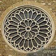 Rose Of The Cathedral Of San Giusto Art Print