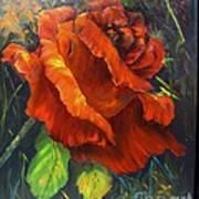 Rose Red Art Print