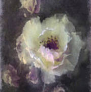 Rose Spray Art Print by Jill Balsam