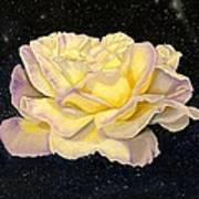 Rose Stars Art Print