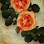 Rose Tinted Memories Art Print