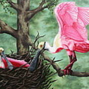 Roseate Spoonbill Nesters  Art Print