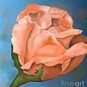 Rosebud Peaches And Cream Art Print