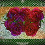 Roses- Featured In Beautiful Roses And Comfortable Art Groups Art Print