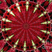 Roses Kaleidoscope Under Glass 11 Art Print