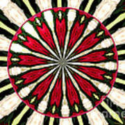 Roses Kaleidoscope Under Glass 17 Art Print