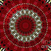 Roses Kaleidoscope Under Glass 18 Art Print