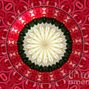 Roses Kaleidoscope Under Glass 19 Art Print