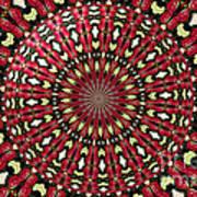 Roses Kaleidoscope Under Glass 21 Art Print