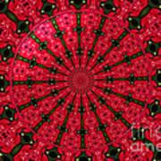 Roses Kaleidoscope Under Glass 24 Art Print