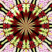 Roses Kaleidoscope Under Glass 25 Art Print