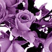 Roses - Lilac Art Print