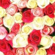 Roses Of Love Art Print