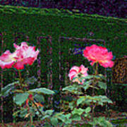 Roses Of South Pasadena 1 Art Print by Kenneth James