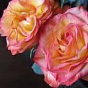 Roses On Dark Background Art Print