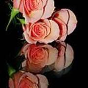 Roses On Glass Art Print