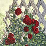 Roses On Lattice Art Print