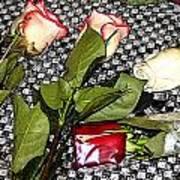 Roses From Rosa... Art Print