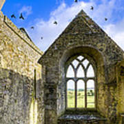 Ross Errilly Friary - Irish Monastic Ruins Art Print by Mark E Tisdale