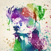 Rottweiler Splash Art Print by Aged Pixel