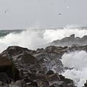 Rough Sea At Ocean Shores Art Print