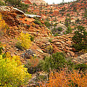 Rough Terrain In Autumn Along Zion-mount Carmel Highway In Zion Np-ut Art Print