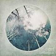 round treetops III Art Print