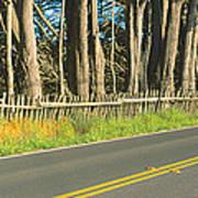Route 1, Mendocino, California Art Print