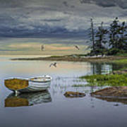 Row Boat By Mount Desert Island Art Print