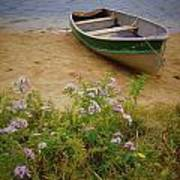 Rowboat And Asters Art Print