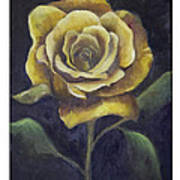 Royal Gold Bloom Art Print by Nancy Edwards