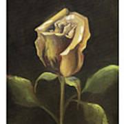 Royal Gold Bud Art Print by Nancy Edwards