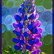 Royal Purple Lupine Flower Abstract Art Art Print