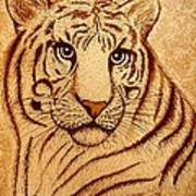 Royal Tiger Coffee Painting Art Print