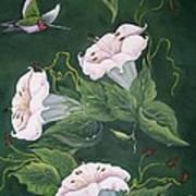Hummingbird And Lilies Art Print