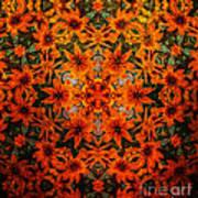 Rudi 2 Texture Art Print
