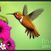 Rufus Hummingbird Art Print