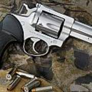 Ruger Security Six Stainless Art Print