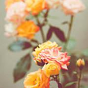 Rumba Rose Art Print