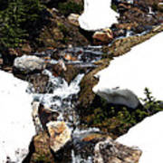 Running Down The Mountain Art Print
