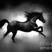 Running Horse Print by Robert Foster
