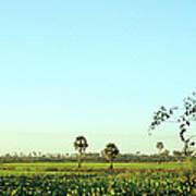Rural Cambodia Art Print